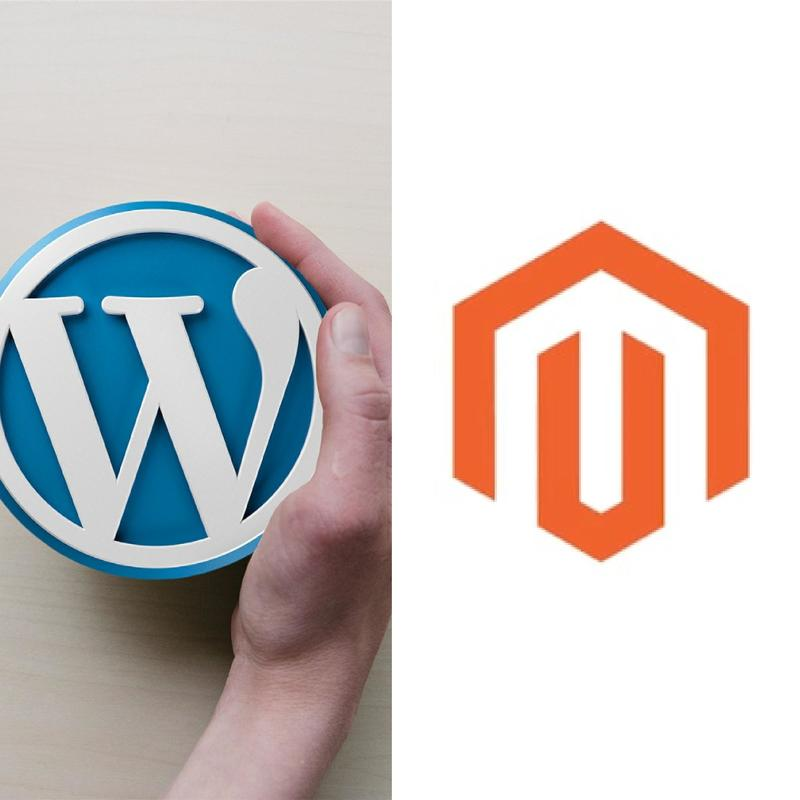 WORDPRESS OR MAGENTO – WHICH IS BETTER FOR YOUR ECOMMERCE BUSINESS?